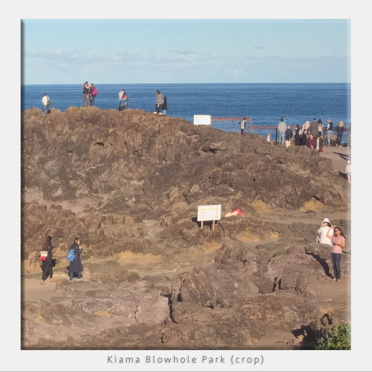 Kiama Blowhole Park 100% crop iPad pro DNG image quality test