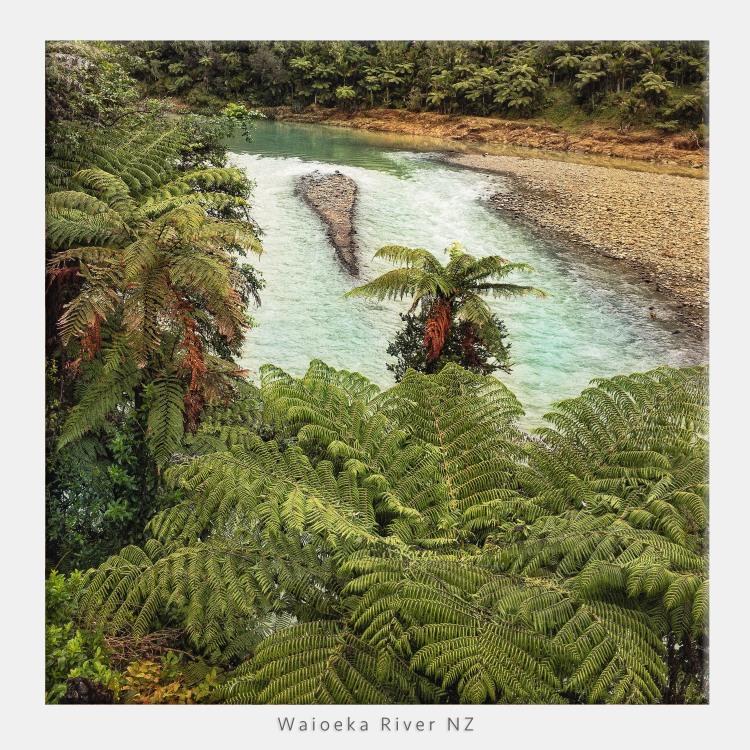 Waieko River NZ