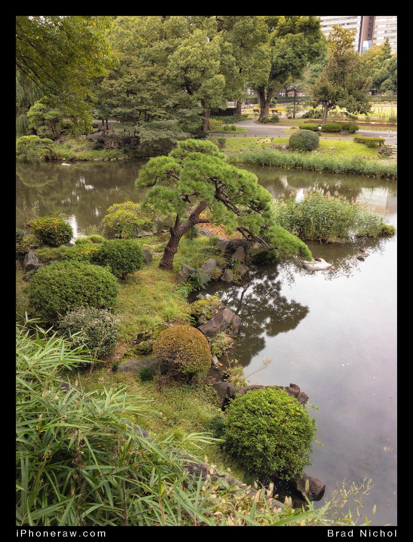 Hibiyakoen, a park near Ginza, Tokyo, gardens, ponds, zen style.